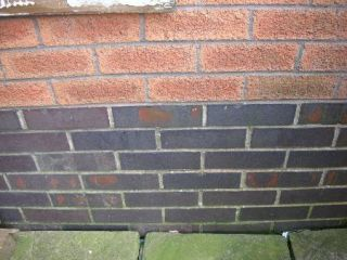 damp proof level